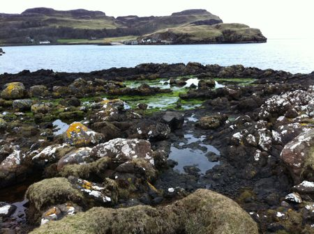 view from Sanday across rocks to Canna